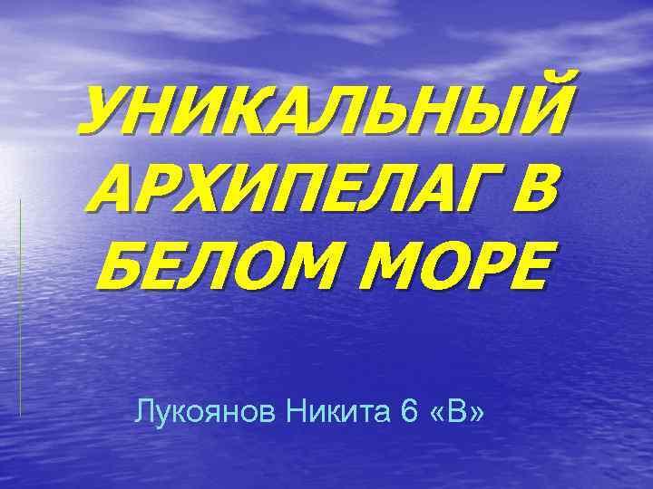УНИКАЛЬНЫЙ АРХИПЕЛАГ В БЕЛОМ МОРЕ Лукоянов Никита 6 «В»