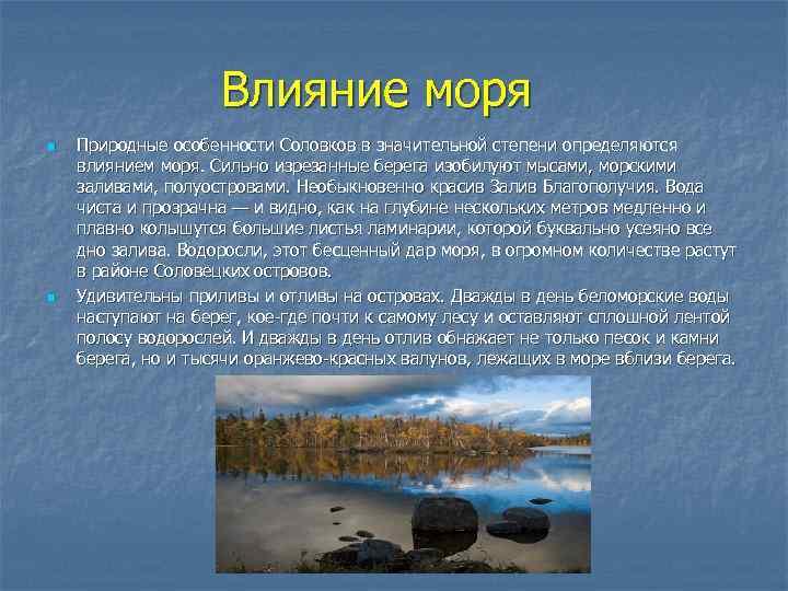 Влияние моря n n Природные особенности Соловков в значительной степени определяются влиянием моря. Сильно