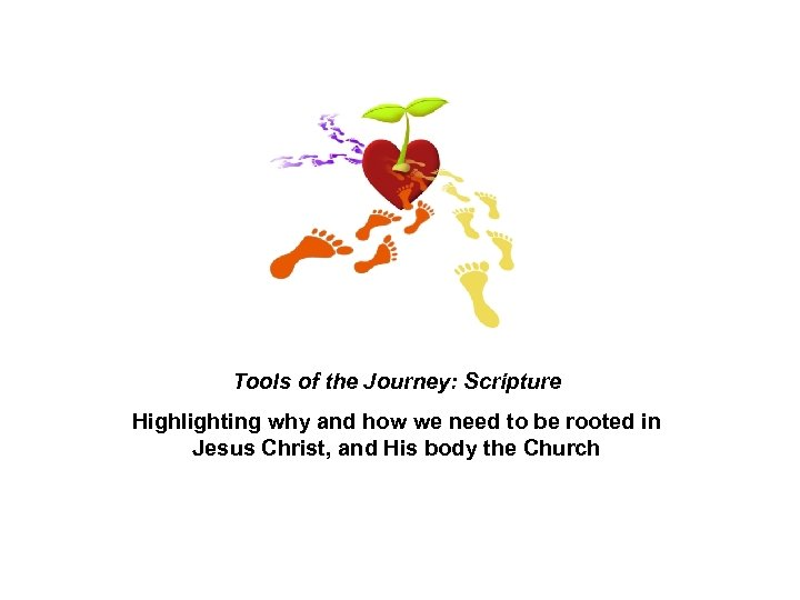 Tools of the Journey: Scripture Highlighting why and how we need to be rooted