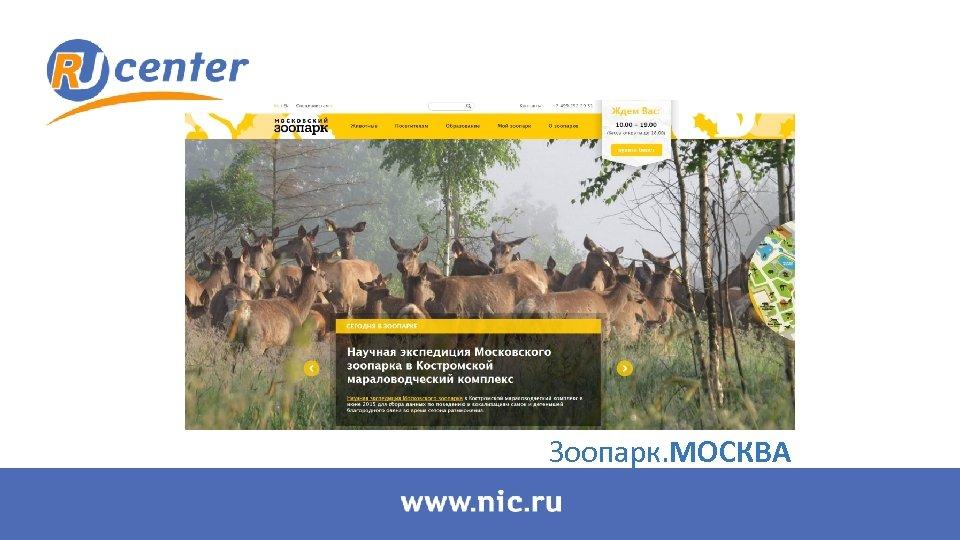 Зоопарк. МОСКВА