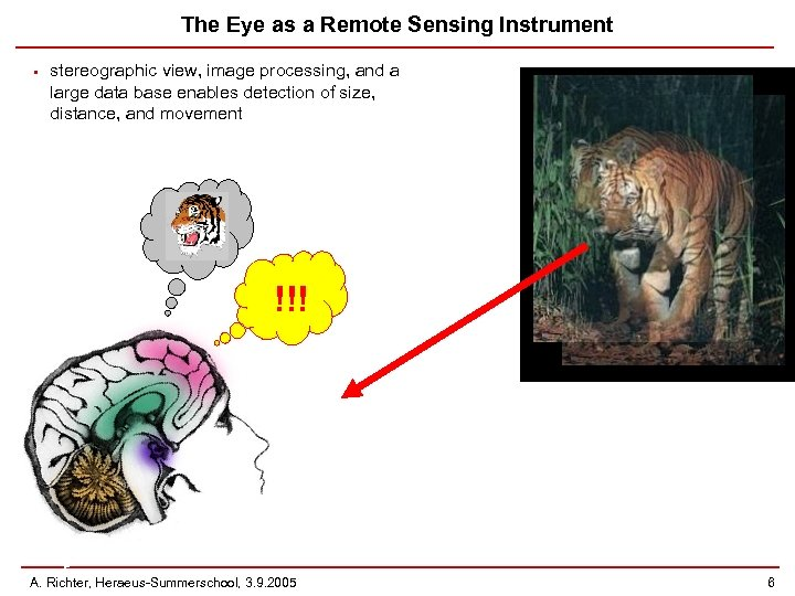 The Eye as a Remote Sensing Instrument • stereographic view, image processing, and a