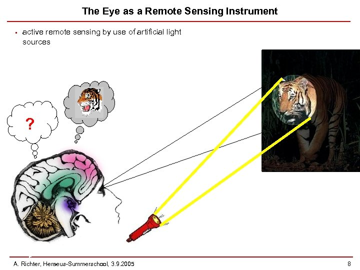 The Eye as a Remote Sensing Instrument • active remote sensing by use of