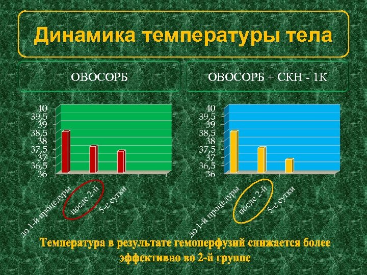 Динамика температуры тела ОВОСОРБ + СКН - 1 К
