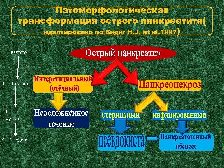 Патоморфологическая трансформация острого панкреатита( адаптировано по Beger H. J. et al. 1997) начало 1