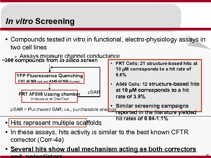 In vitro Screening • Compounds tested in vitro in functional, electro-physiology assays in two