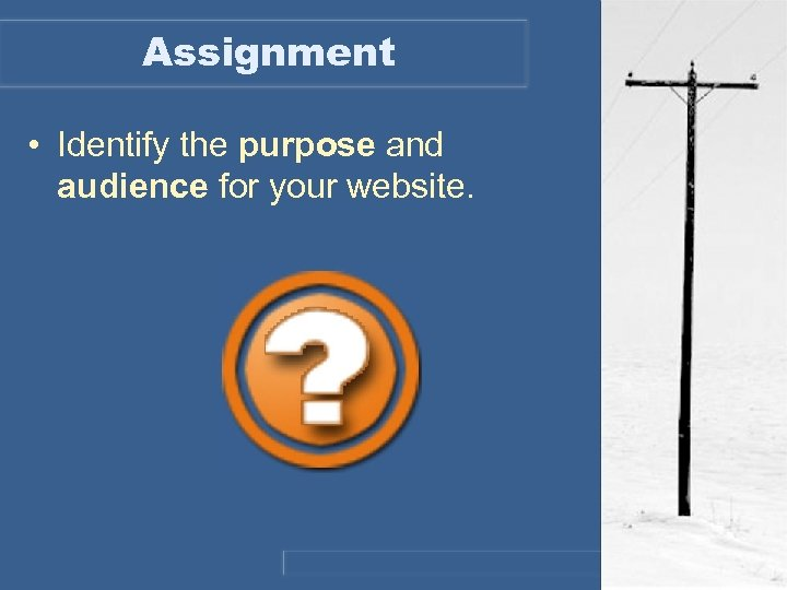 Assignment • Identify the purpose and audience for your website.