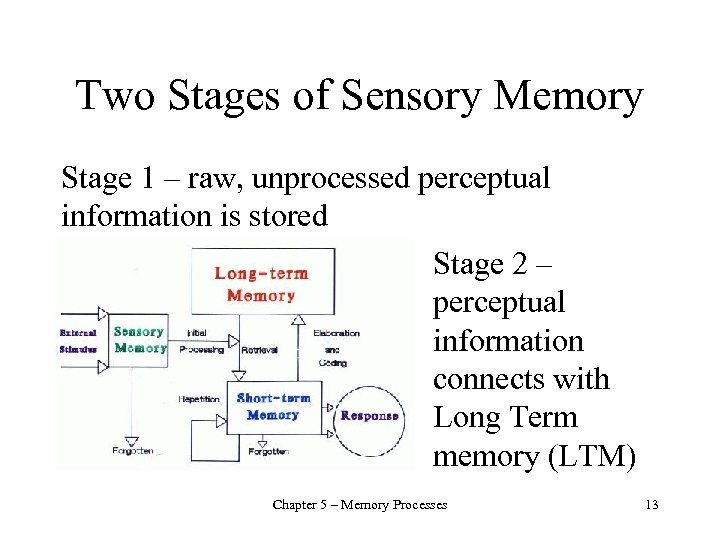 Two Stages of Sensory Memory Stage 1 – raw, unprocessed perceptual information is stored