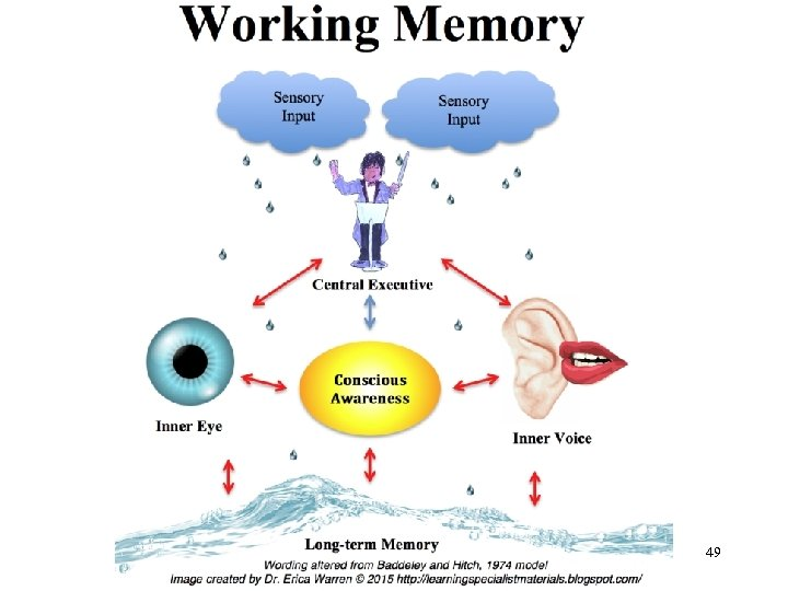 Chapter 5 – Memory Processes 49