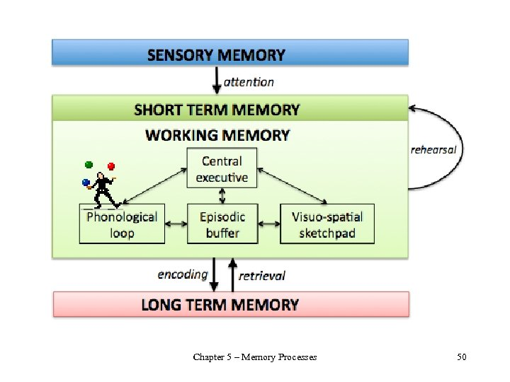 Chapter 5 – Memory Processes 50