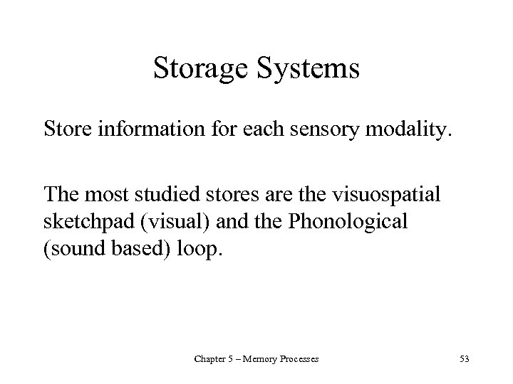 Storage Systems Store information for each sensory modality. The most studied stores are the