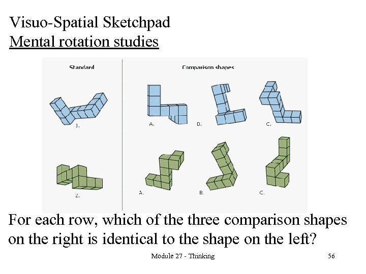 Visuo-Spatial Sketchpad Mental rotation studies For each row, which of the three comparison shapes