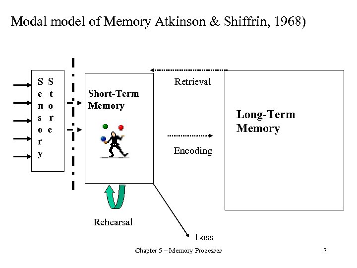 Modal model of Memory Atkinson & Shiffrin, 1968) S S e t n o