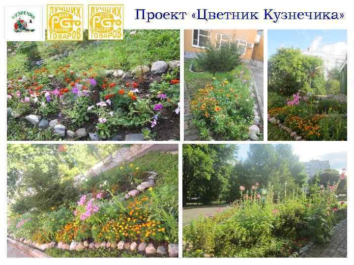 Проект «Цветник Кузнечика»