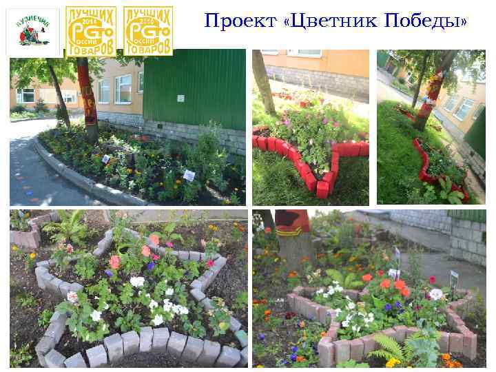 Проект «Цветник Победы»