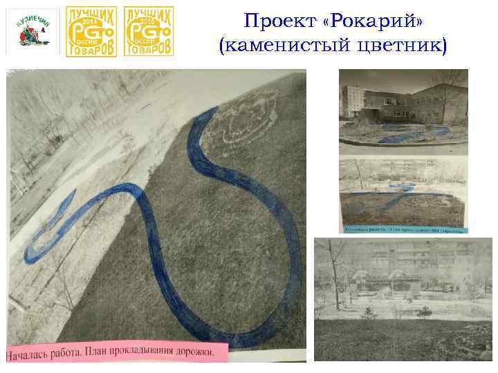 Проект «Рокарий» (каменистый цветник)