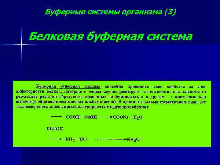 Буферные системы организма (3) Белковая буферная система