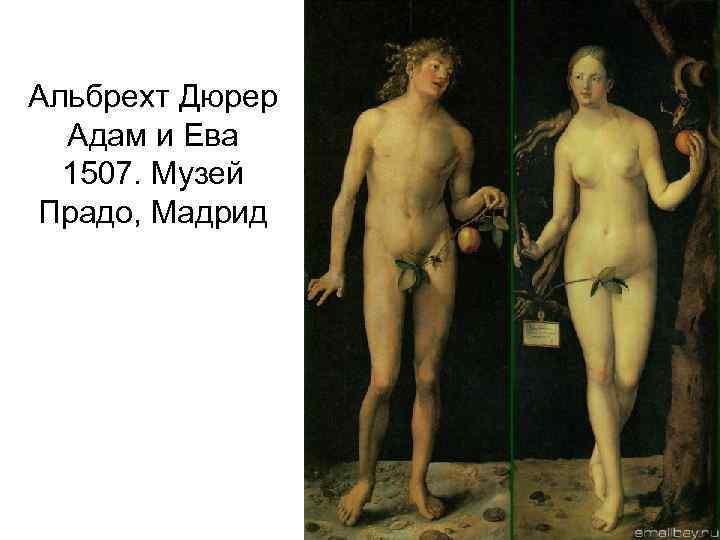 Альбрехт Дюрер Адам и Ева 1507. Музей Прадо, Мадрид