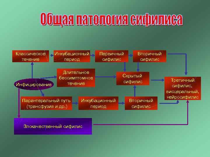 Классическое течение Инфицирование Инкубационный период Первичный сифилис Длительное бессимптомное течение Парантеральный путь (трансфузия и