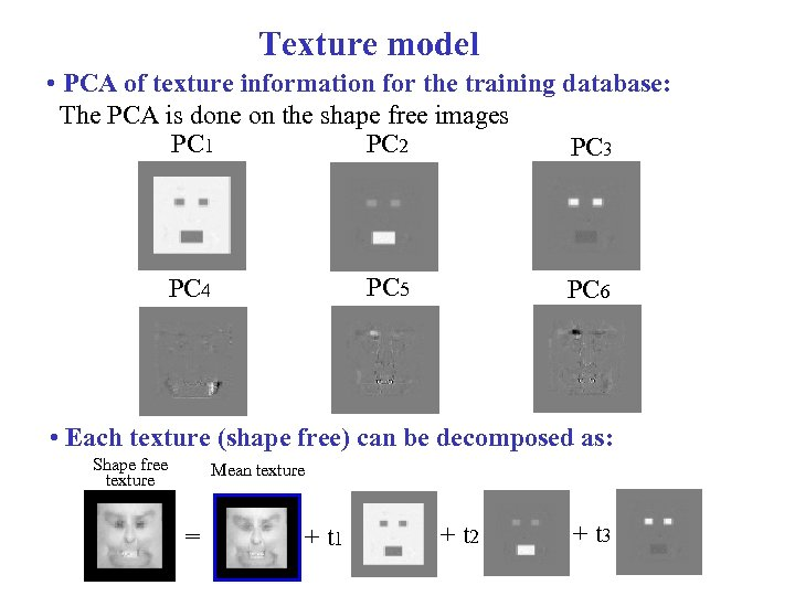 Texture model • PCA of texture information for the training database: The PCA is
