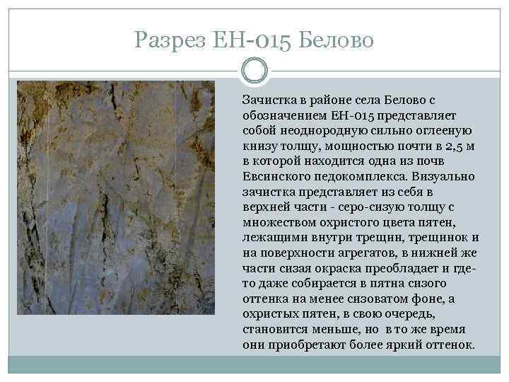 Разрез ЕН-015 Белово Зачистка в районе села Белово с обозначением ЕН-015 представляет собой неоднородную