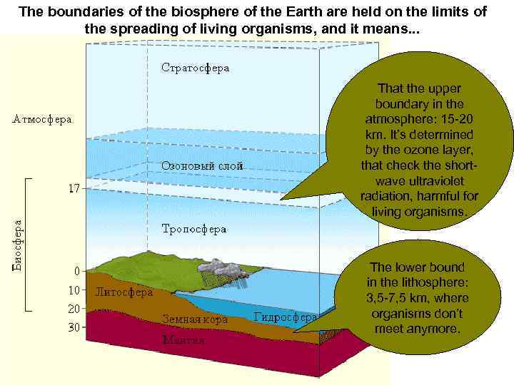 The boundaries of the biosphere of the Earth are held on the limits of