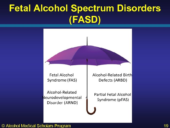 Fetal Alcohol Spectrum Disorders (FASD) © Alcohol Medical Scholars Program 19