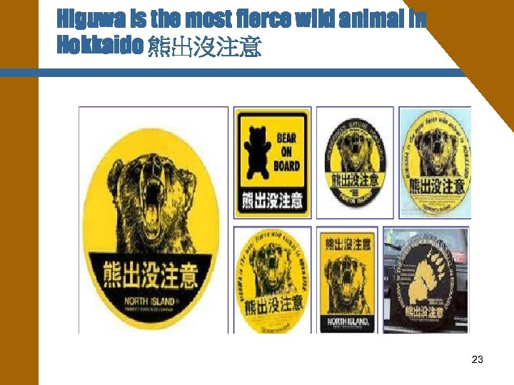 Higuwa is the most fierce wild animal in Hokkaido 熊出沒注意 23