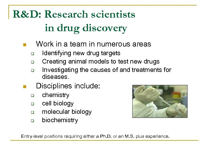 R&D: Research scientists in drug discovery Work in a team in numerous areas n