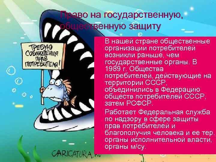 Право на государственную, общественную защиту n n В нашей стране общественные организации потребителей возникли