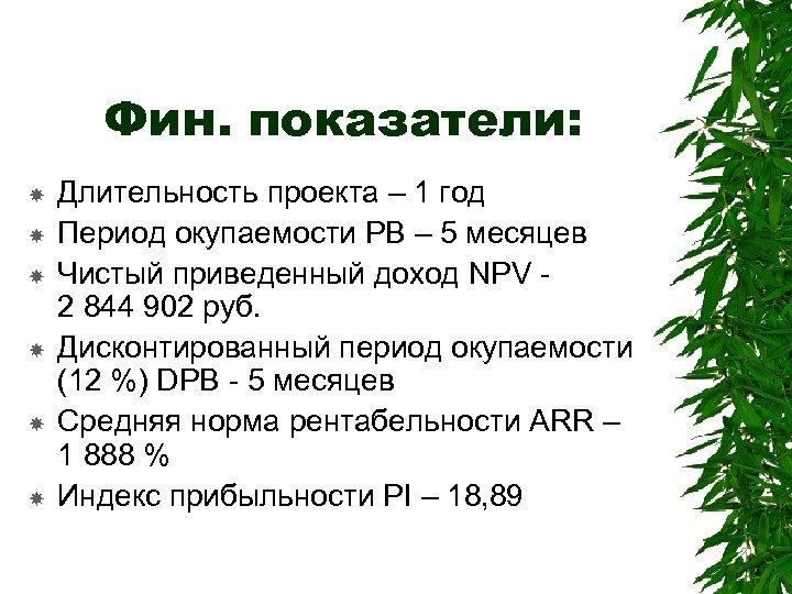 Фин. показатели: Длительность проекта – 1 год Период окупаемости РВ – 5 месяцев Чистый