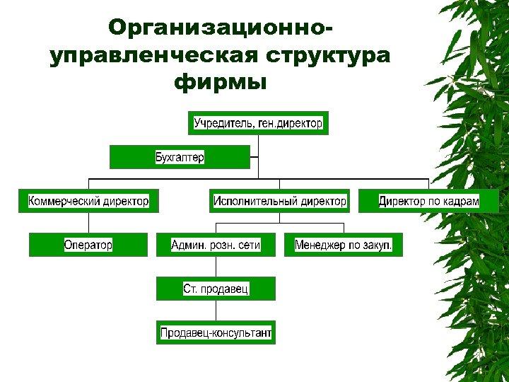 Организационноуправленческая структура фирмы