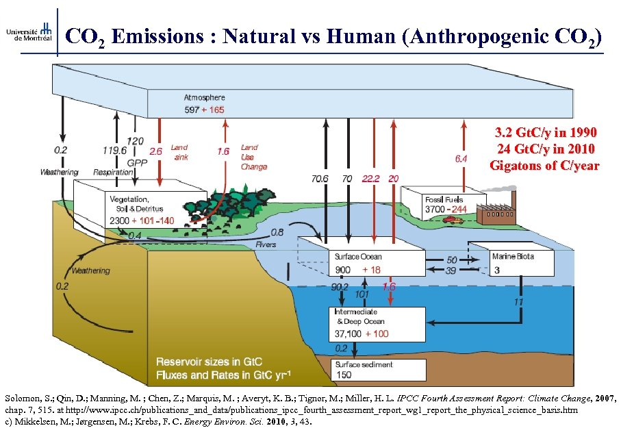 CO 2 Emissions : Natural vs Human (Anthropogenic CO 2) 3. 2 Gt. C/y