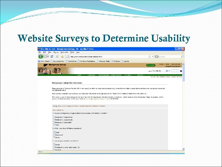 Website Surveys to Determine Usability