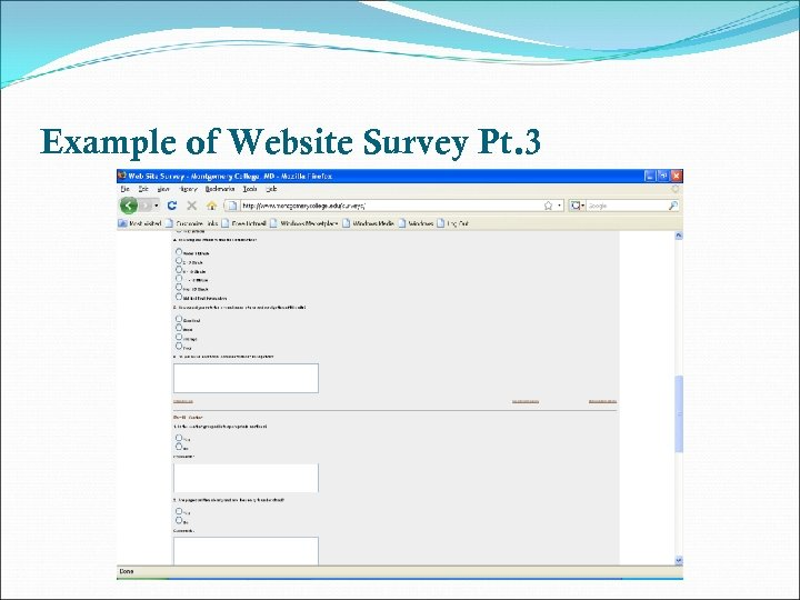 Example of Website Survey Pt. 3
