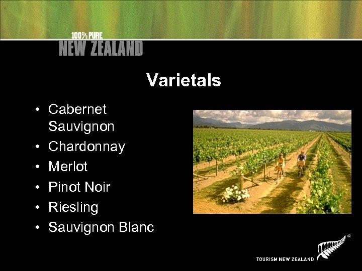 Varietals • Cabernet Sauvignon • Chardonnay • Merlot • Pinot Noir • Riesling •