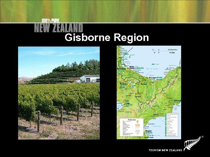 Gisborne Region
