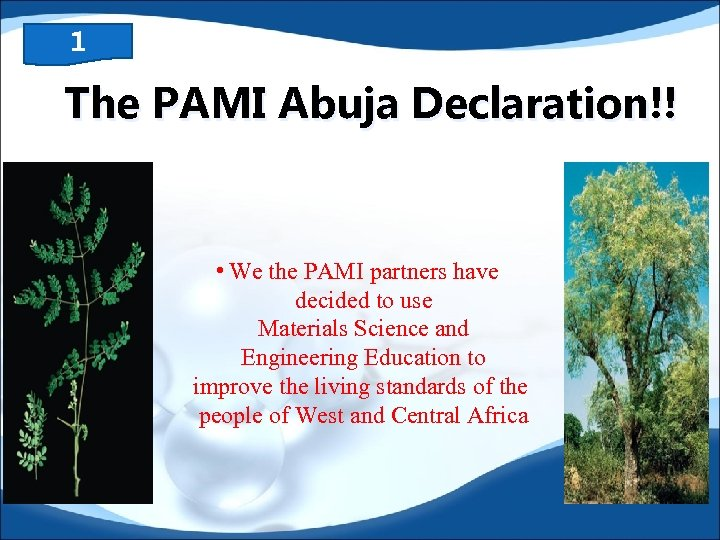 1 The PAMI Abuja Declaration!! • We the PAMI partners have decided to use