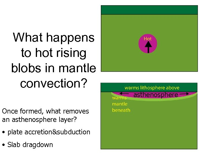 What happens to hot rising blobs in mantle convection? Once formed, what removes an