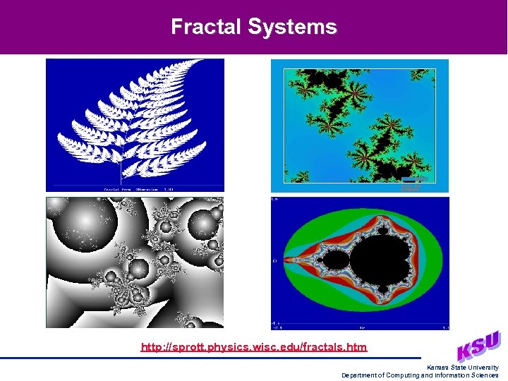 Fractal Systems http: //sprott. physics. wisc. edu/fractals. htm Kansas State University Department of Computing