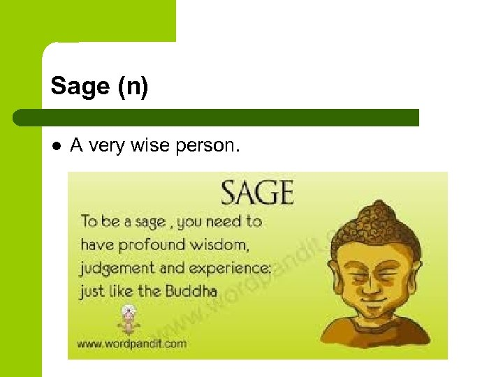 Sage (n) l A very wise person.