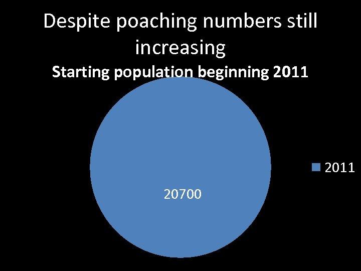 Despite poaching numbers still increasing Starting population beginning 2011 20700