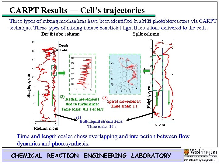 CARPT Results — Cell's trajectories Three types of mixing mechanisms have been identified in