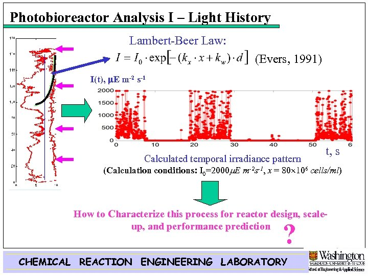 Photobioreactor Analysis I – Light History Lambert-Beer Law: (Evers, 1991) I(t), m. E m-2
