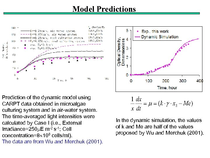 Model Predictions Prediction of the dynamic model using CARPT data obtained in microalgae culturing