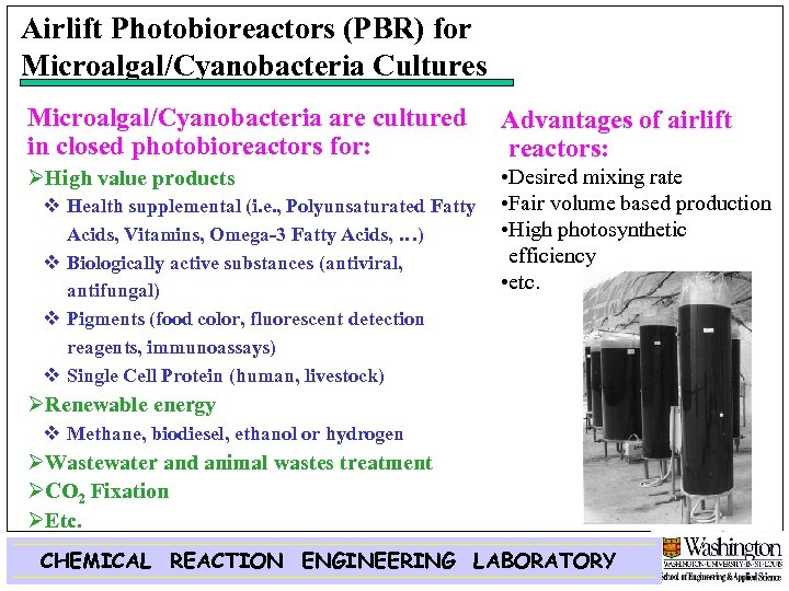 Airlift Photobioreactors (PBR) for Microalgal/Cyanobacteria Cultures Microalgal/Cyanobacteria are cultured in closed photobioreactors for: Advantages