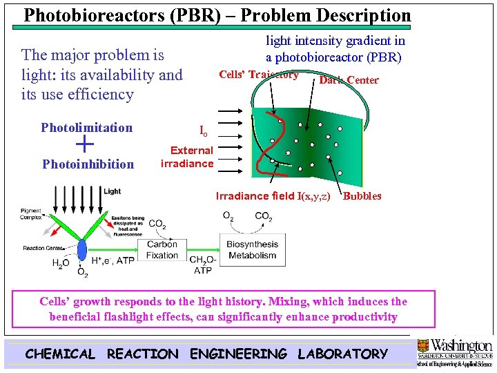 Photobioreactors (PBR) – Problem Description light intensity gradient in a photobioreactor (PBR) The major
