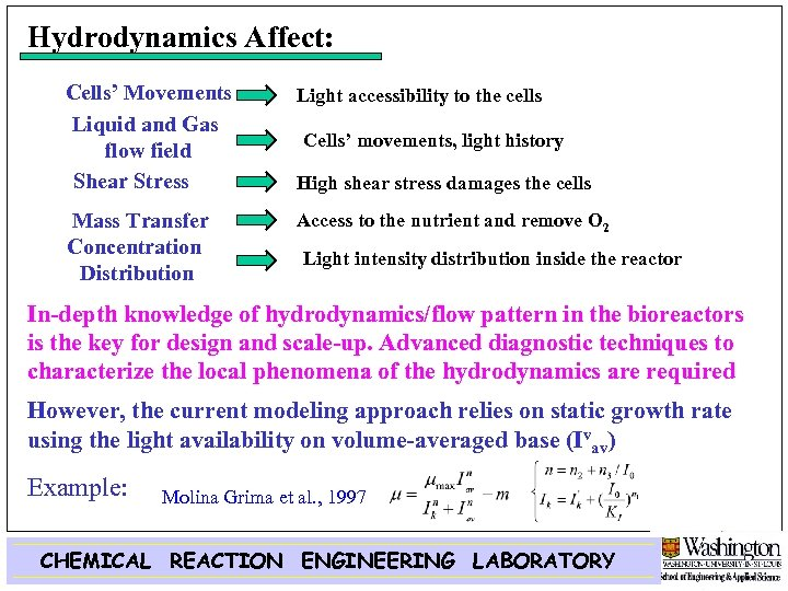 Hydrodynamics Affect: Cells' Movements Liquid and Gas flow field Shear Stress Light accessibility to