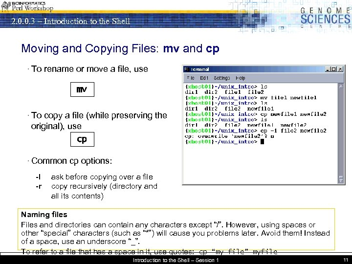 2. 0. 0. 3 – Introduction to the Shell Moving and Copying Files: mv