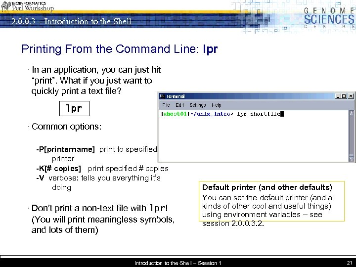 2. 0. 0. 3 – Introduction to the Shell Printing From the Command Line: