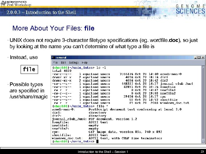 2. 0. 0. 3 – Introduction to the Shell More About Your Files: file